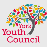 York Youth Council small